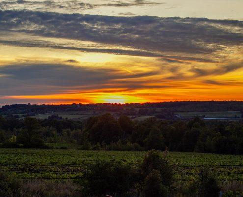 Sunset photograph at Coffin Ridge Winery